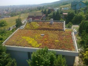izolarea acoperișului verde