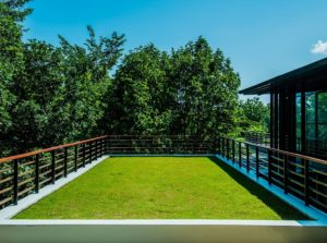 acoperiș verde